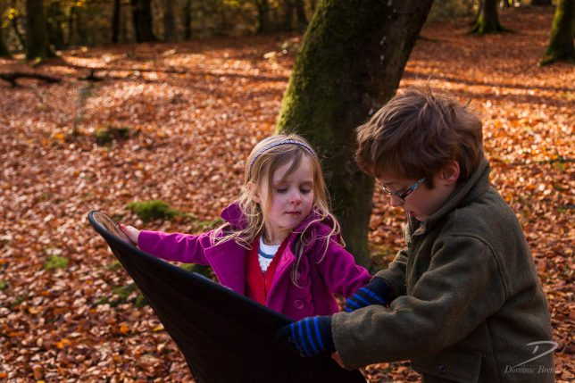 Little blonde girl and her brother playing with a photograhic reflector in the New Forest