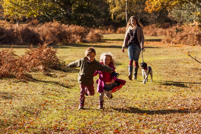 Little boy and girl running through the New Forest on an autumn morning
