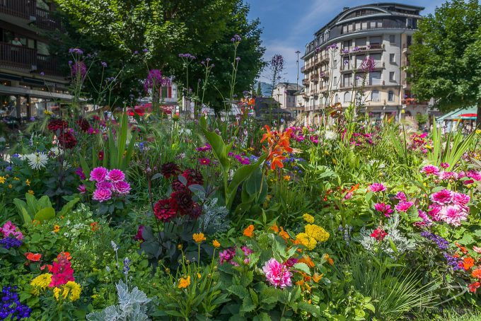 Floral border in Chamonix town centre